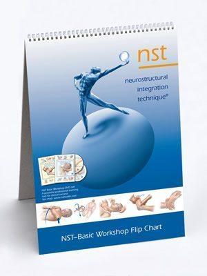 NST Flip Chart Advanced