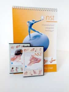 nst-adv-training-system