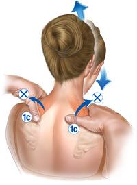 shoulder_1c
